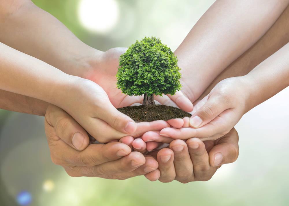 La mejora del medio ambiente, una labor de particulares, familias y empresas
