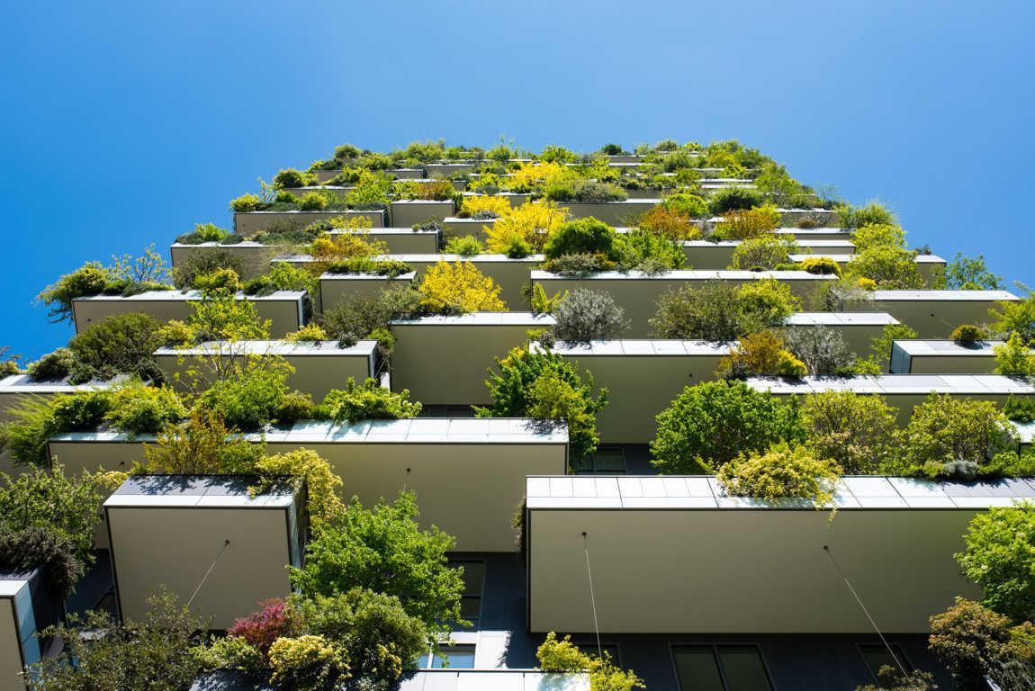 Construcciones ecológicas: nuevas tendencias para 2.020